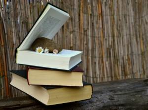 顎関節症とかみ合わせの悩みが解決する本